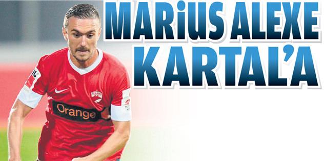 Marius Alexe Beşiktaş'a