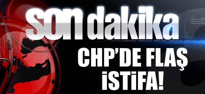 Emine �lker Tarhan CHP'den istifa etti