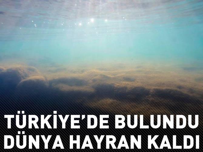 TÜRKİYE'DE BULUNDU DÜNYA HAYRAN KALDI