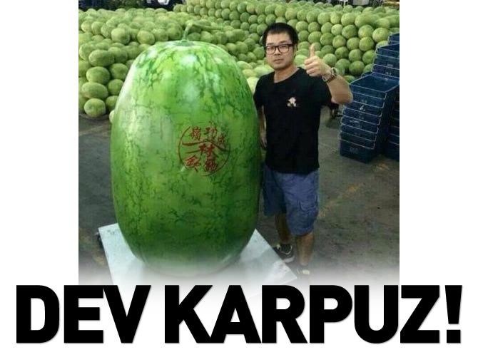 DEVASA KARPUZ!