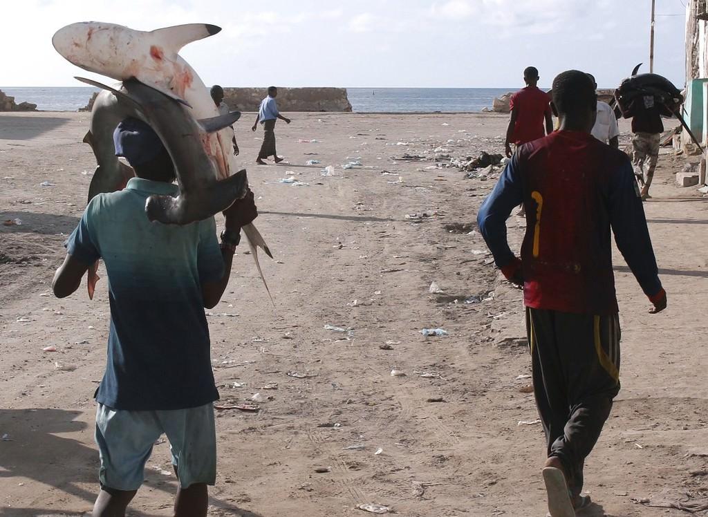 Somali'de balıkçılık
