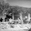 II. Abdülhamid'in arşivinden İstanbul fotoğrafları