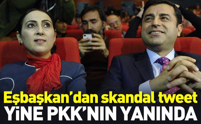 Eşbaşkan Yüksekdağ'dan skandal tweet