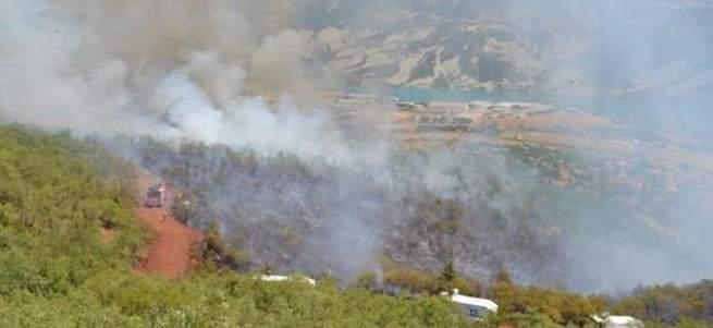 Tunceli'de orman yangınına TOMA'lar müdahale etti