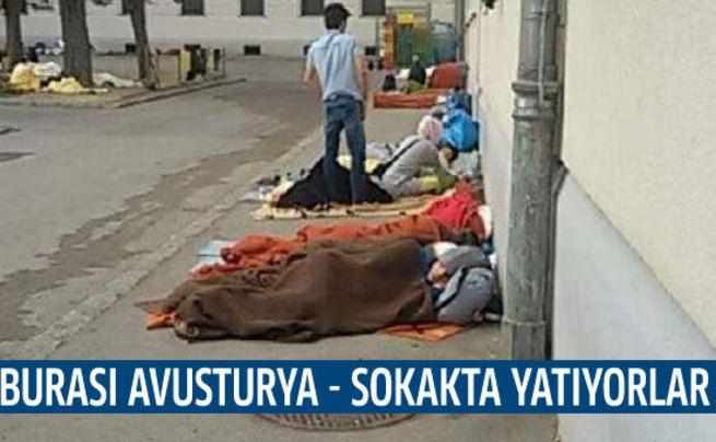 Avusturya'nın utanç kampları