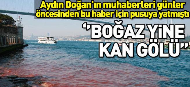 DHA'nın geleneksel kurban haberi: Boğaz kan gölü