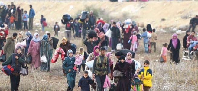Suriyeli mültecilere 'kuduz köpek' benzetmesi