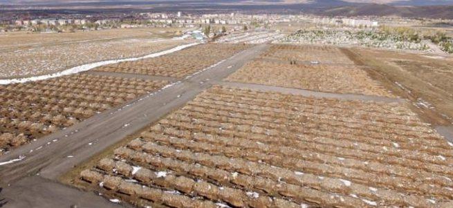 Erzurum'da bin 800 mezar kazıldı!
