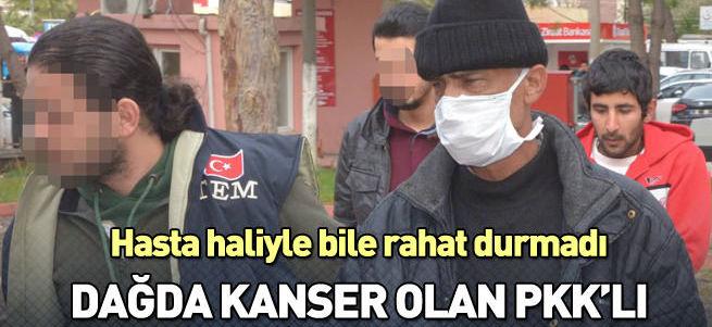 PKK'lı kanser tedavisi için Adana'ya gitmiş!