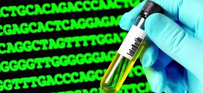 Biyolojik süper bilgisayar test edildi