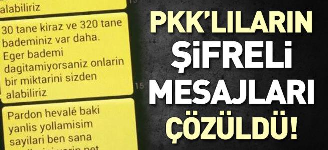 Sınırda yakalanan PYD'linin cep telefonunda 'kiraz' ve 'badem' mesajları