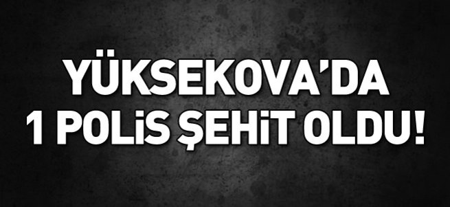 Yüksekova'da 1 polis şehit oldu