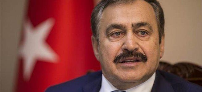 Bakan Eroğlu'ndan 'vatandaşlık' açıklaması