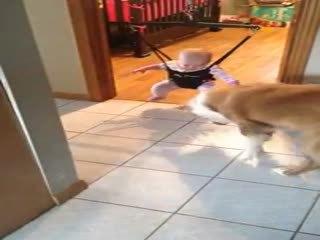Bebe�e Z�plamay� Ö�reten Köpek
