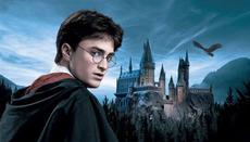 Harry Potter'�n evi ziyarete a��ld�