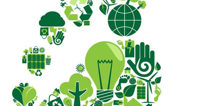 Carbon Footprint Essay Sample