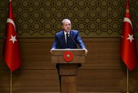President Recep Tayyip Erdoğan on Friday has said that a Turkish-style presidential system can be built by picking the best features of different presidential systems in the world.
