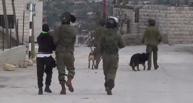 Israeli troops terrorize Palestinian child with dogs
