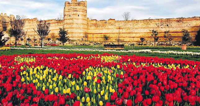 A Colorful Burst Of Tulips Will Bloom For The Istanbul