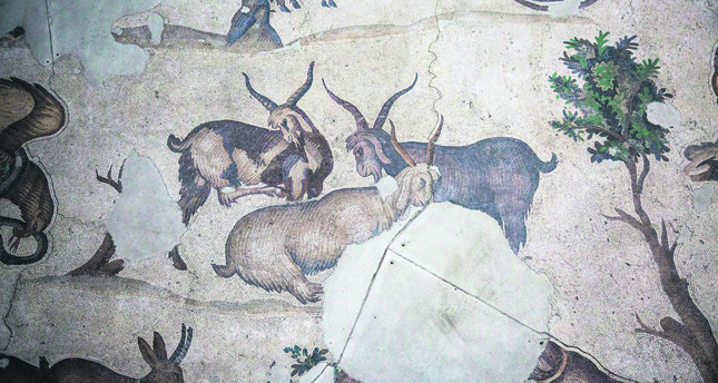 Great Palace Museum's ancient mosaics to be restored