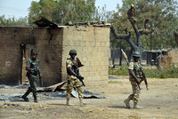 At least 234 captives -- mostly children and women -- were rescued from various Boko Haram camps in the northeastern state of Borno while 31 militants were killed in separate operations by...