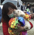 Dog found alive after 120 hours trapped in collapsed Taiwan building