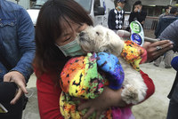 A poodle was rescued early Thursday after being trapped for days in a Taiwan building that collapsed in an earthquake at the weekend, a news report said. 
