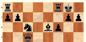 Satranç şampiyonası Mardin'de