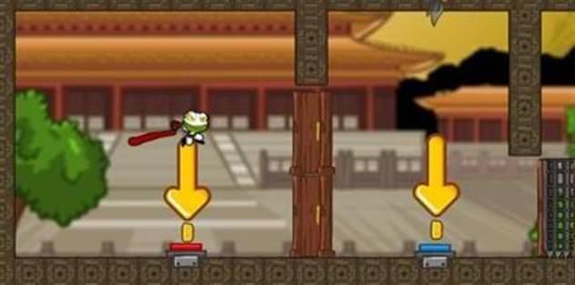 Ninja kurbağa