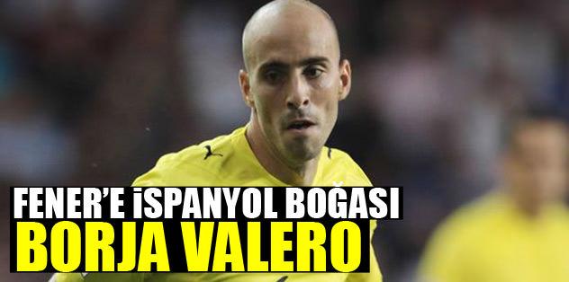 Fener'e İspanyol boğası Borja Valero