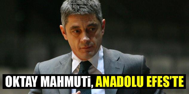 Oktay Mahmuti, Efes'te