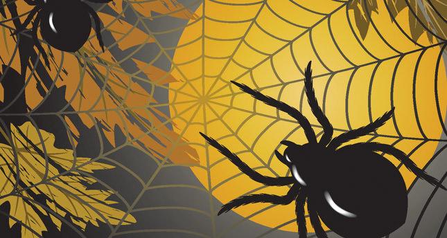 Örümceğin biri