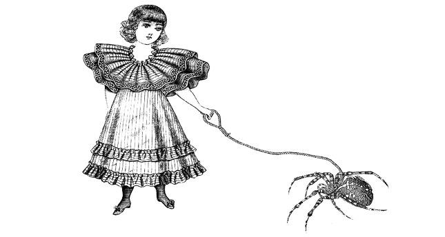 Örümceğin Biri (III)