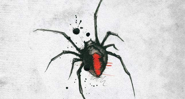 Örümceğin biri (IV)