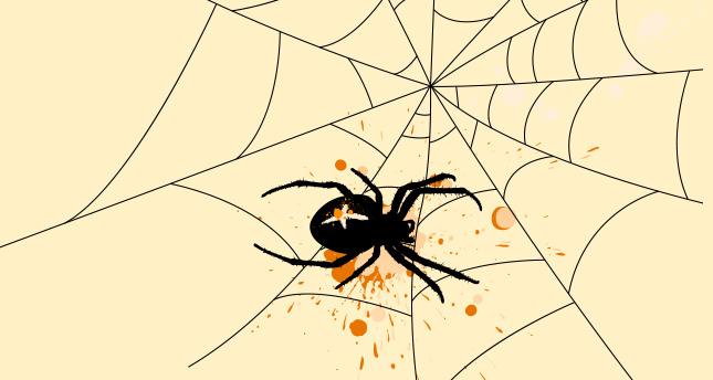 Örümceğin biri (VI)
