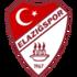 Vartaş Elazığspor