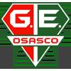 Gremio Esportivo Osasco SP U20