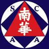 Güney Çin
