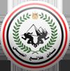Talaea El Gaish