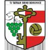 TJ Tatran Bohunice
