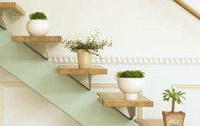 Merdivenler çiçek açtı