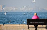 Marmara'da havalar 10 derece ısınacak