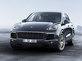 Porsche, Cayenne Platinum Edition�� Sat��a Sundu