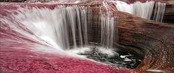 Dünyanın En Güzel Nehri (içinde çiçek çıkıyor ! )
