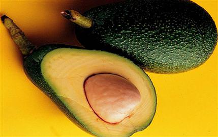 Avokado (Avocado)