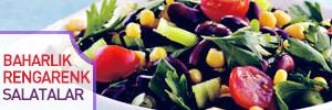 Baharl�k rengarenk salatalar
