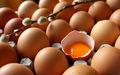 Yumurta hakkında bilmediğiniz bir şey daha var…