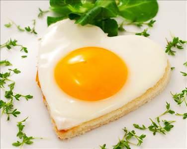 Günde 1 yumurta mutluluk veriyor