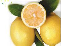 Sar�msakl� limon suyu faydal� m�