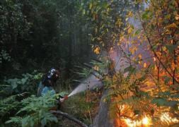 Tarlasını temizlerken orman yangınına sebep oldu